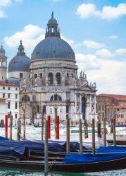 Декор Береза-керамика Азалия Венеция 4 синий 25x35