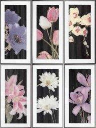 Панно Ceramica Latina Thai Conjunto Negro 6 pz 25x50