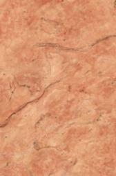 Плитка для стен Нефрит-керамика Агидель 00-10-1-06-01-23-013 30x20 Коричневый
