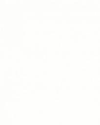 ДСП ламинированная Kronospan 0101 РR Белый Фасадный 2500х1830х16 мм