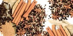 Панно Lasselsberger Spices (комплект 4 шт) 40х80